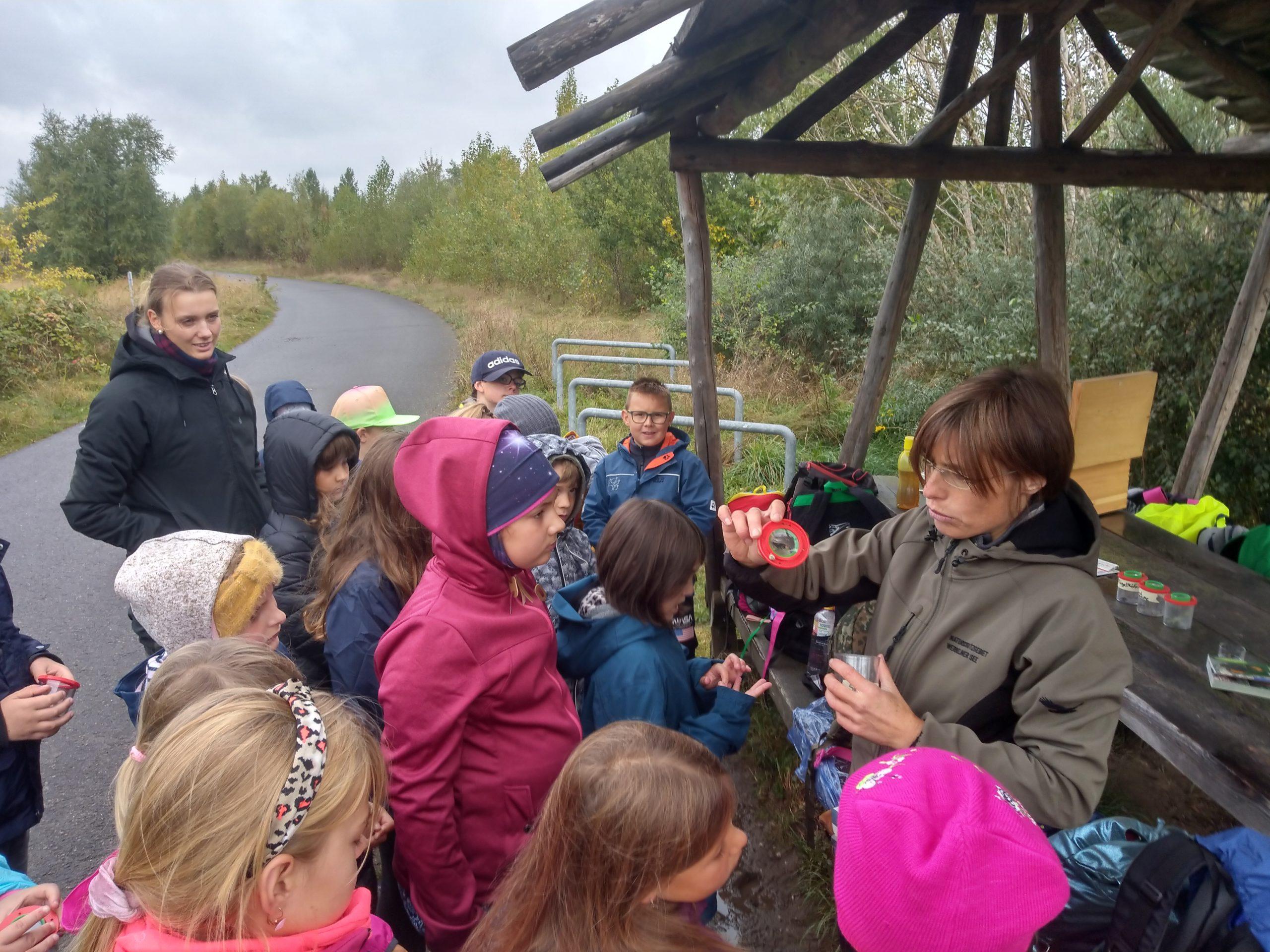 Exkursion in der Wiese – Die gefundenen Insekten werden vorgestellt